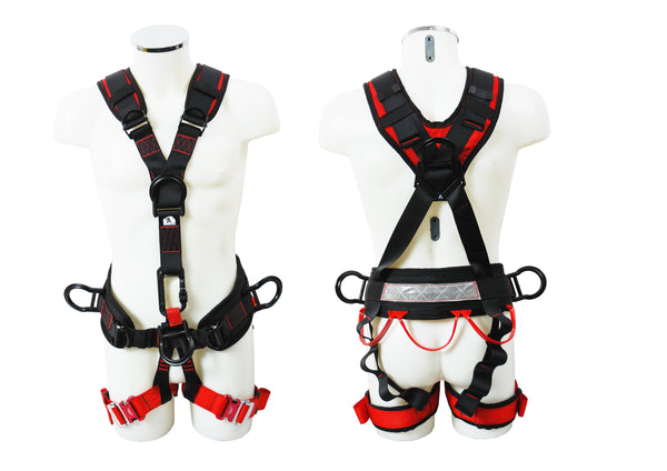 ABPRO - Abtech Access Pro Harness (282-6-2)