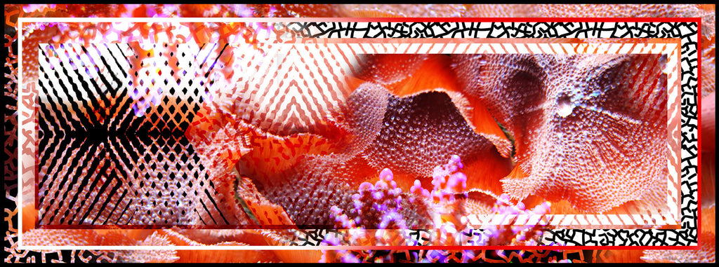 "Scarf Sunset Sands. The diversity of texture and form of the corals and fish of Australia's Great Barrier Reef provided the inspiration for this unique design. Mix & Match with a Coral & Co Kimono Jacket, Slimline long sleeveless jacket, Mid-Length or Long Dress or kaftan for the color coordinated Coral & Co Look. One Size Fits All. Generous sized rectangle shaped scarf. Length: 66"" 175cm Width: 25 1/2"" / 65cm. Fabric: 100% Silk Chiffon 8mm. Country of Origin: China. Designed in Australia. Model is 172cm/5'7.5"" tall: Bust: 105cm/41.5"", Waist: 90cm/35.5"", Hips: 115cm/45.5"". Product Code: CWS16A0001P6-3510"