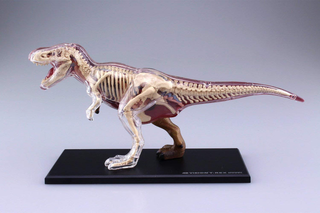 Figure Puzzle 4D VISION No.22 T-REX Anatomy Model AOSHIMA Japan