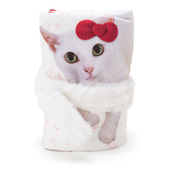 Blanket Hello Kitty Anako chan Cat Sanrio Japan