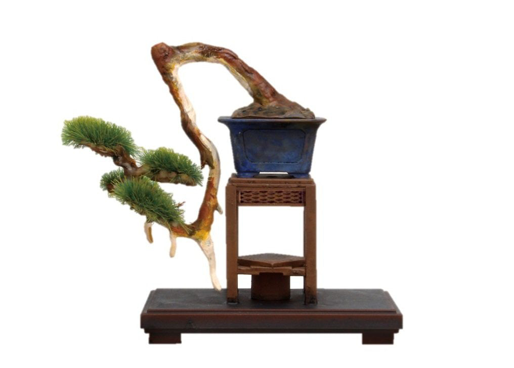 1/12 The Bonsai 3 Shinpaku Plastic Model Kit BON-03 Platz Japan