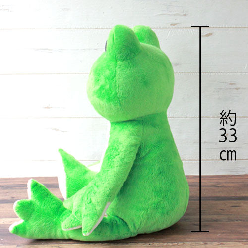 Pickles the Frog Plush Doll M Wakaba Green Rainbow Color Japan