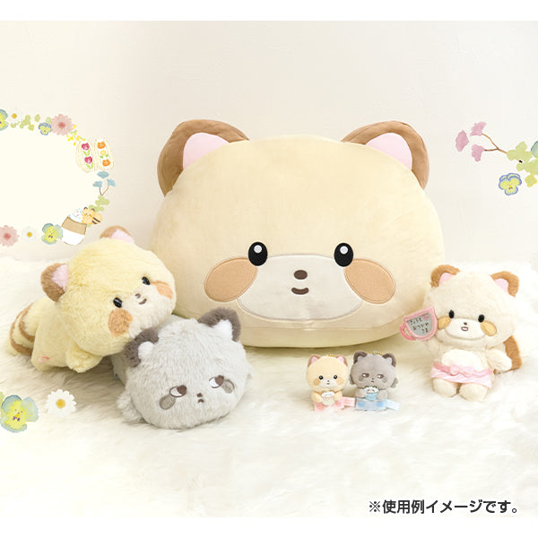 Kokoro Araiguma Plush Doll Message Ouchi Cafe San-X Japan