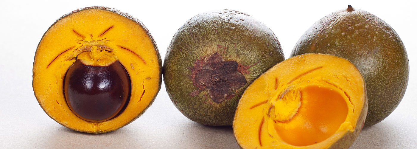 Lucuma - Gold of the Incas