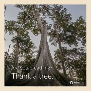 are you breathing? thank a tree