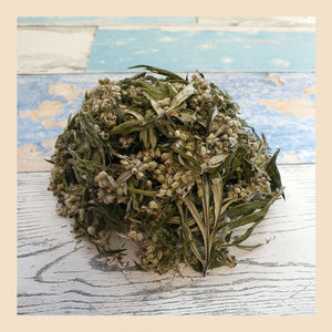 mugwort herbal tea made from loose leaves and flowers