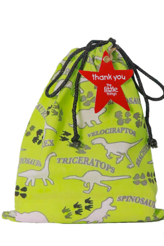 Dinosaur Print Fabric Party Bag