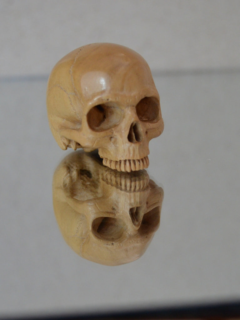 French Boxwood Skull