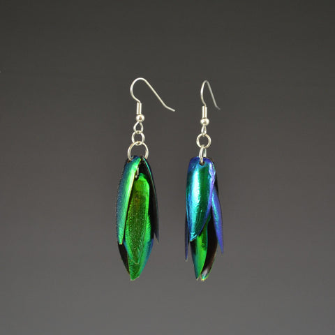 Jewel Beetle Elytra Earrings 3 pair set