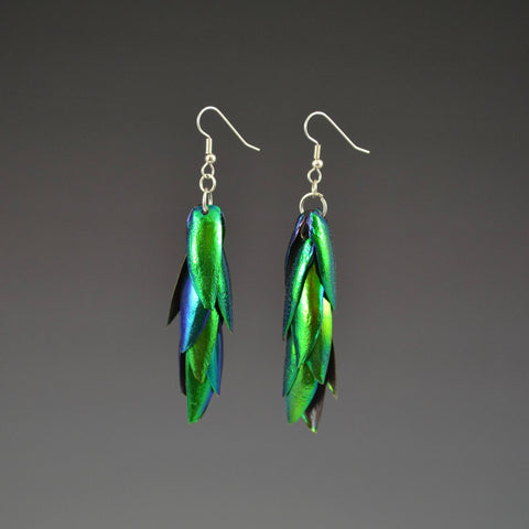 Jewel Beetle Elytra Earrings 4 pair set