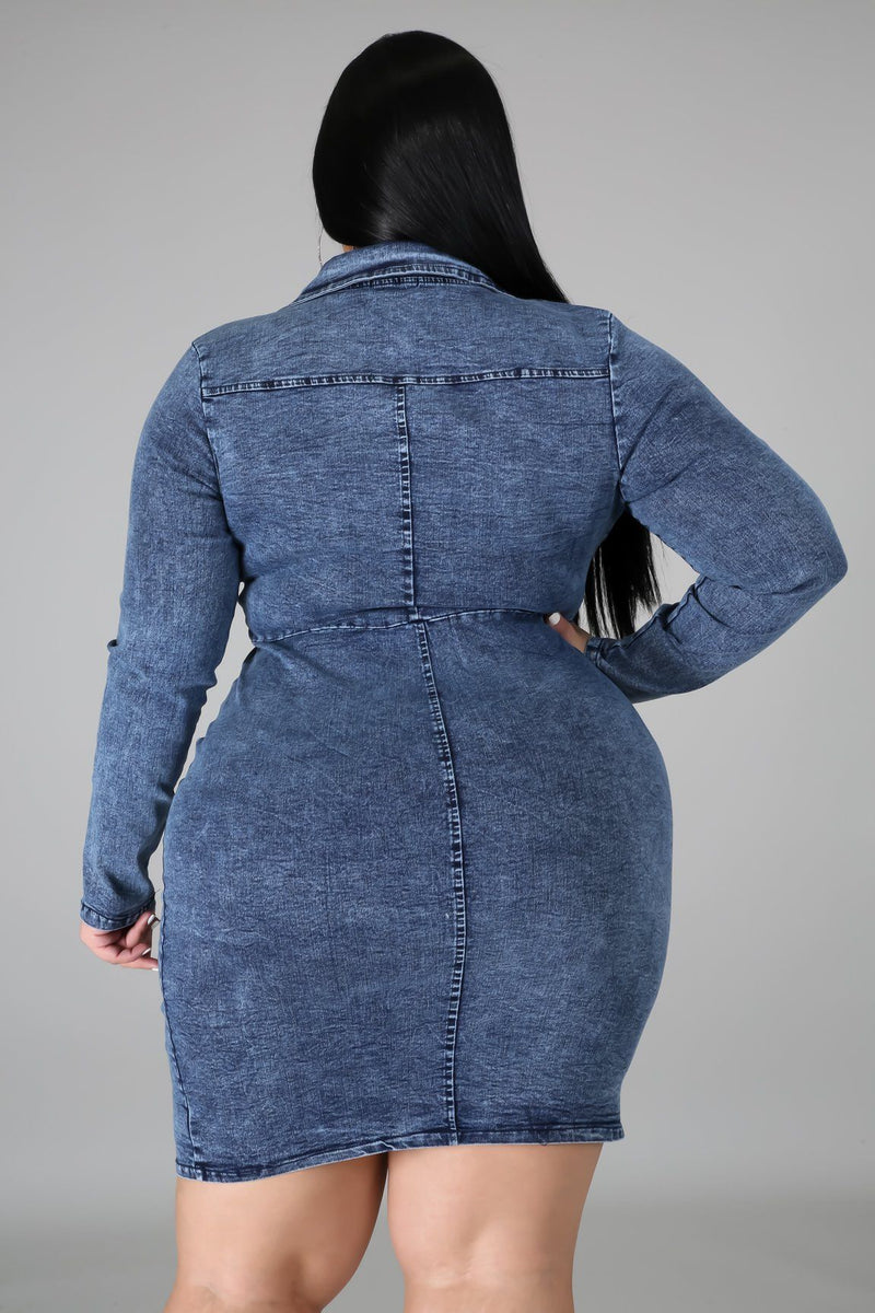 Make It Work Denim Dress
