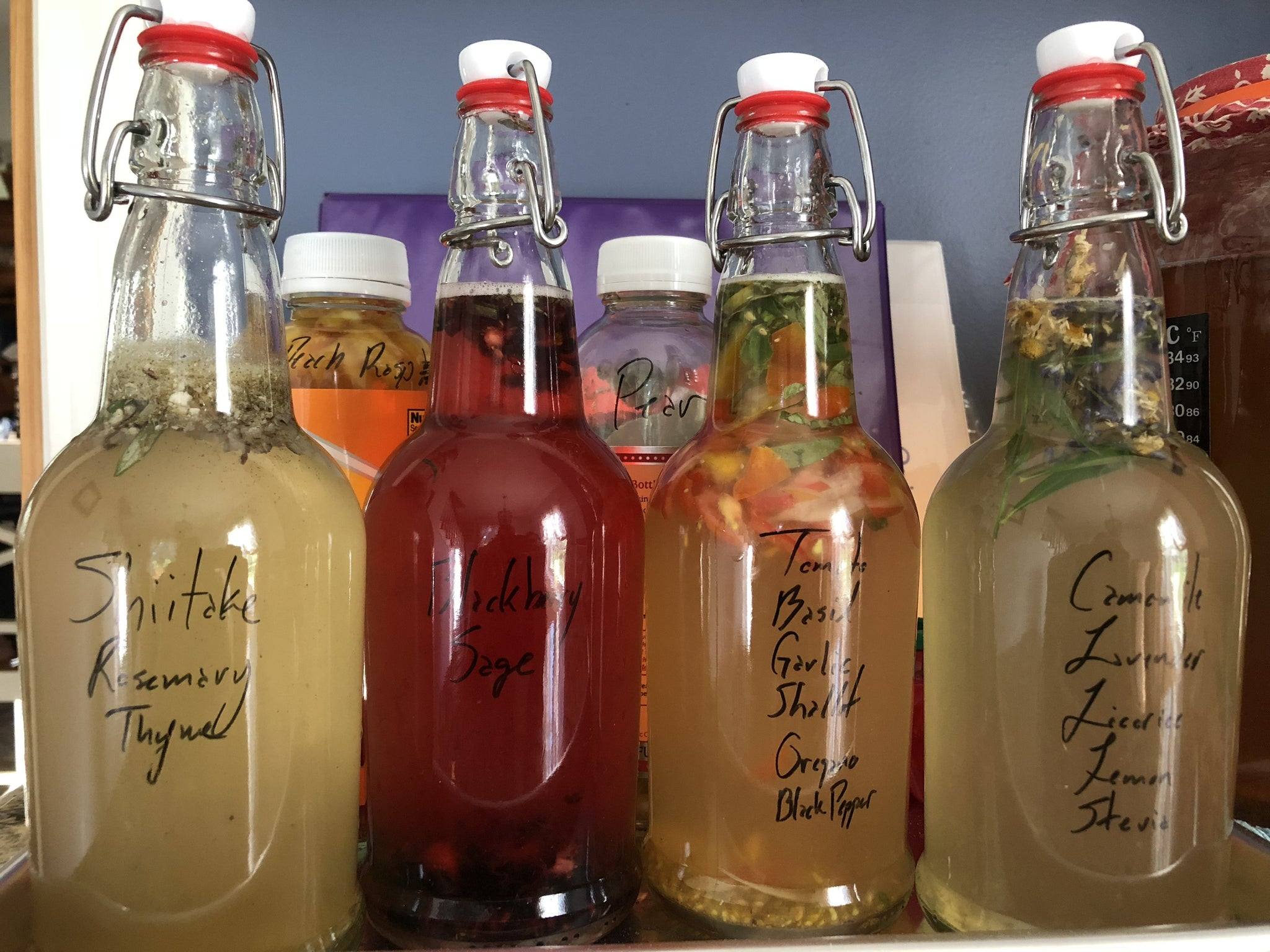 Fun Fermented Drinks - traditional sodas, kombucha, & more!