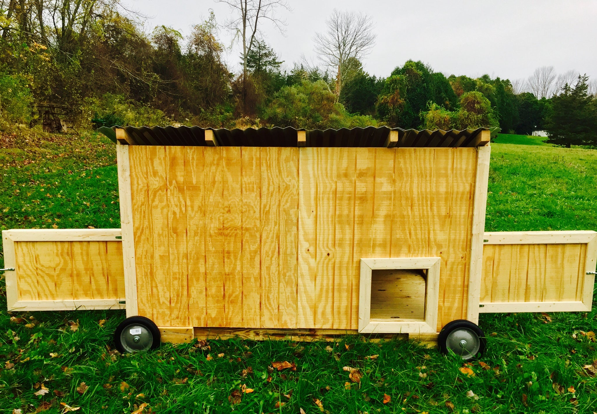 Waterfowl Coop (for Ducks and Geese)
