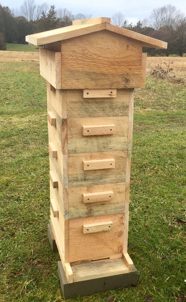 Tri Gable Lea Easier Langstroth Hive Kit- 8 frame foundationless