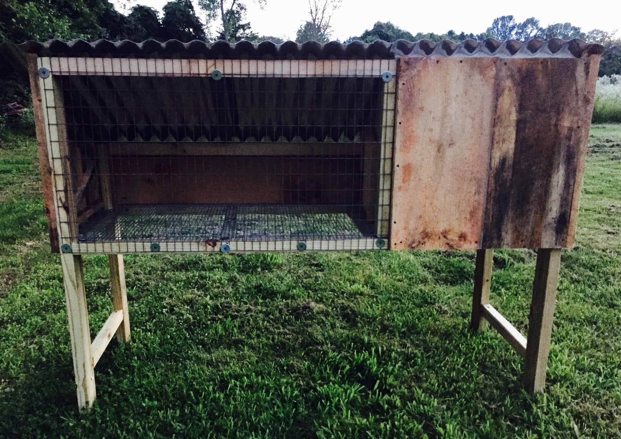 Sturdy Rabbit Hutch