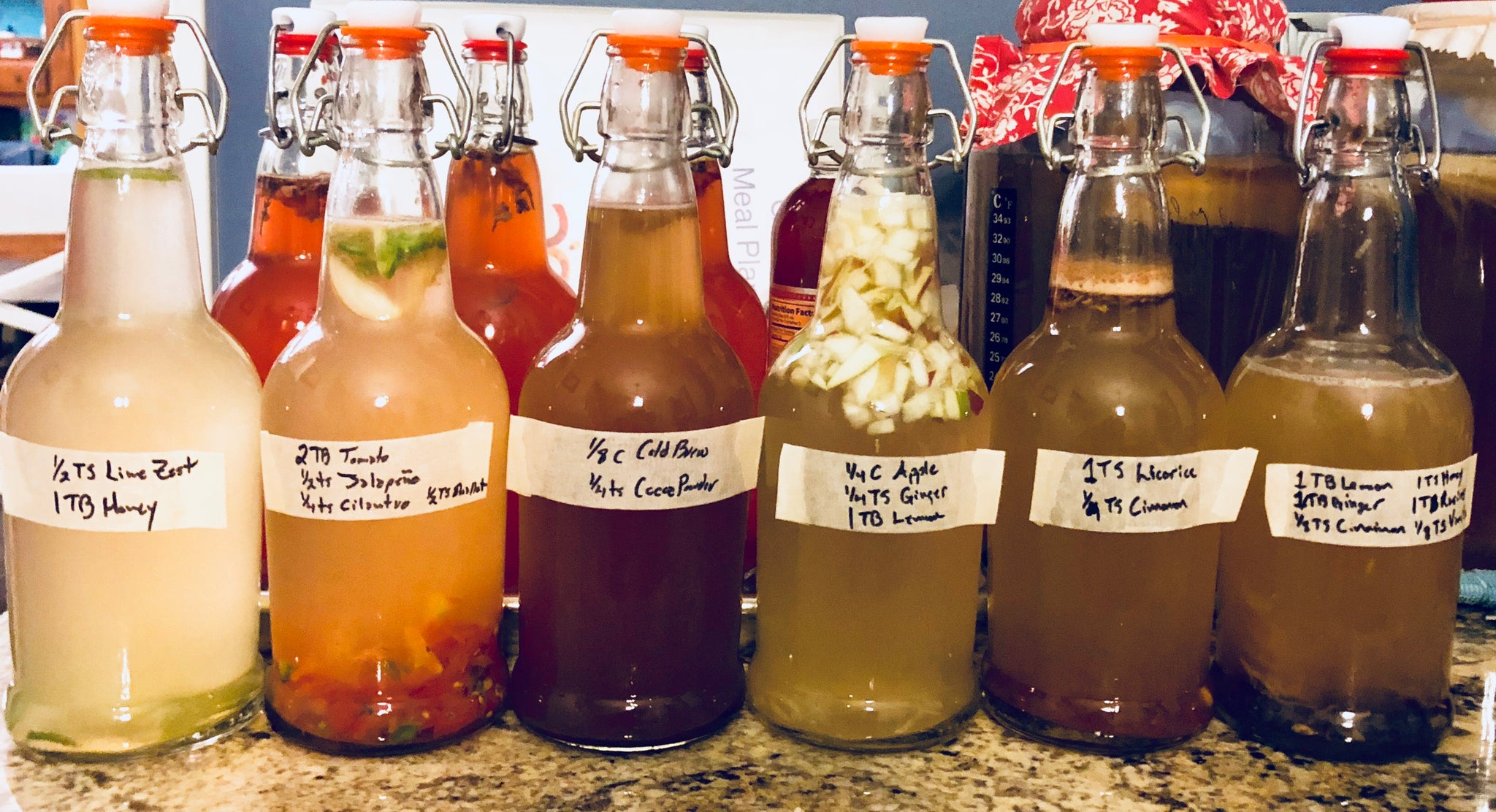Homemade Kombucha, Kefir, & Other Fermented Drinks - 90 Min Intensive Workshop