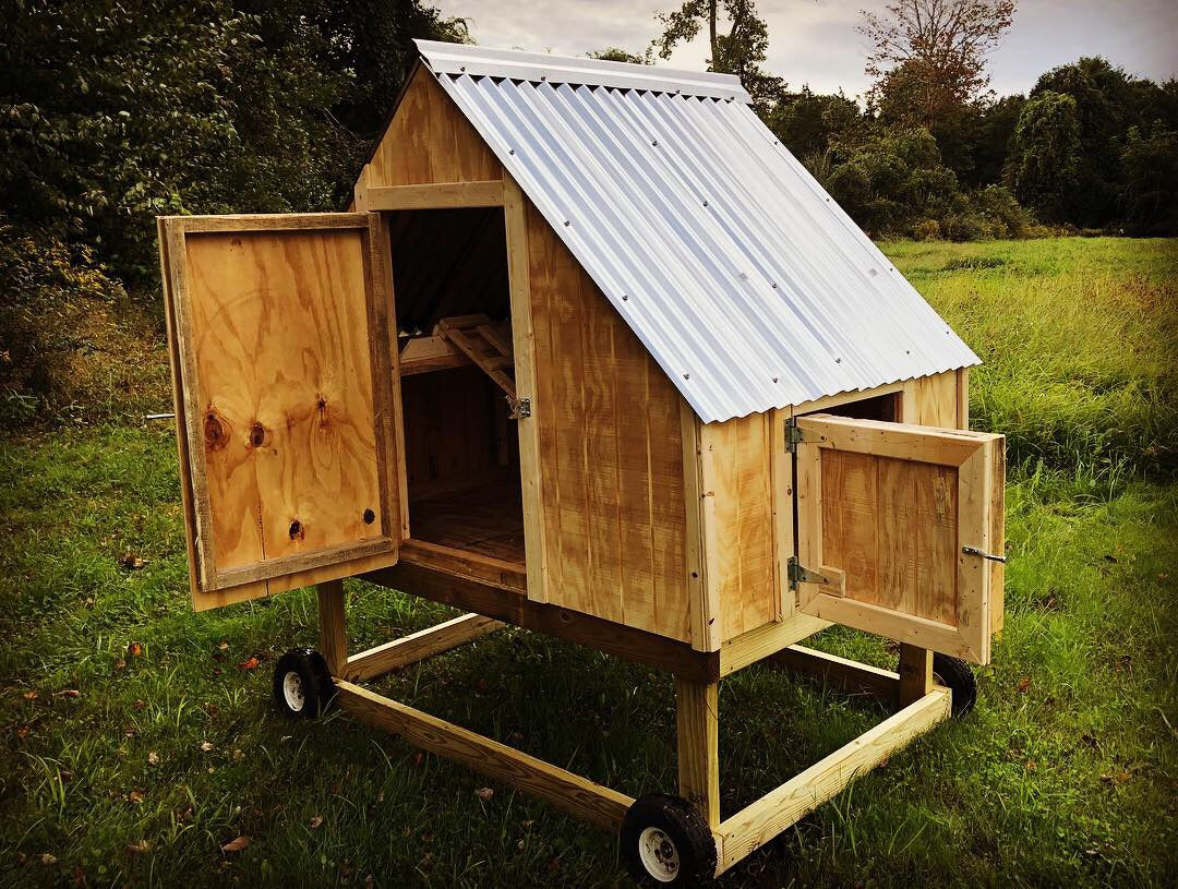 The Cape - Chicken Coop