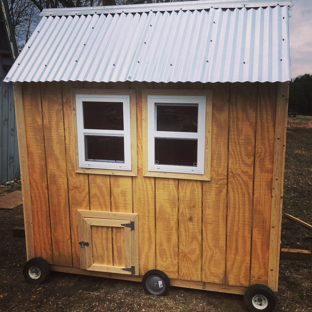 The Queen Coop - 4'x8' walk-in coop with exterior nest boxes