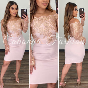 Shinning Moment Dress - (BLUSH/ROSE GOLD)