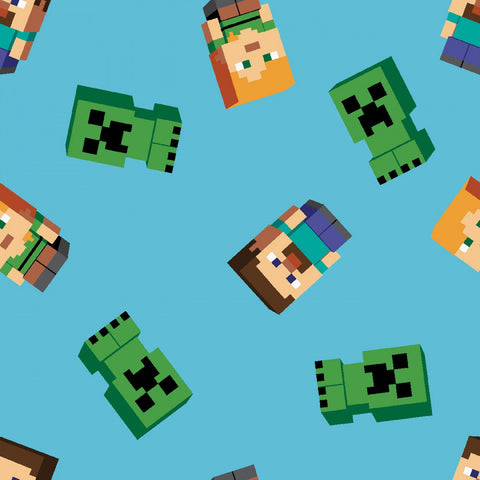 Minecraft Friends