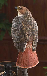 Wildlife sculpture for your home, cabin, den or study featuring great outdoor animals like eagles, hawks, elk and more