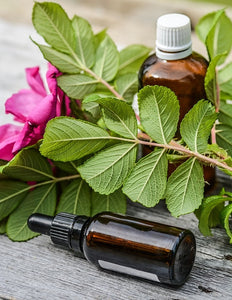 Health and Fitness | Essential Oils A - J