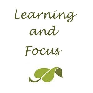 Supplements for Learning and Focus