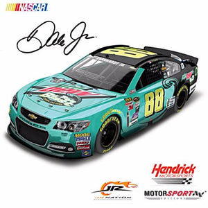 Hobby and collectible Nascar diecast cars