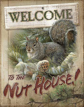Tin Sign | Squirrel Metal Tin Sign Welcome To The Nut House