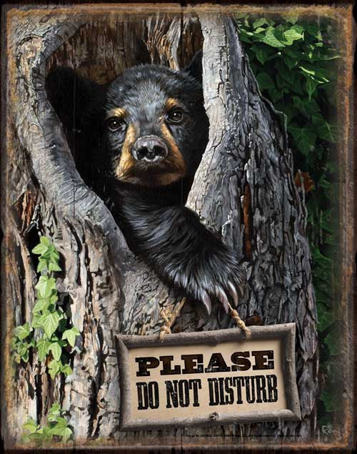 Tin Sign | Black Bear Metal Tin Sign Please Do Not Disturb