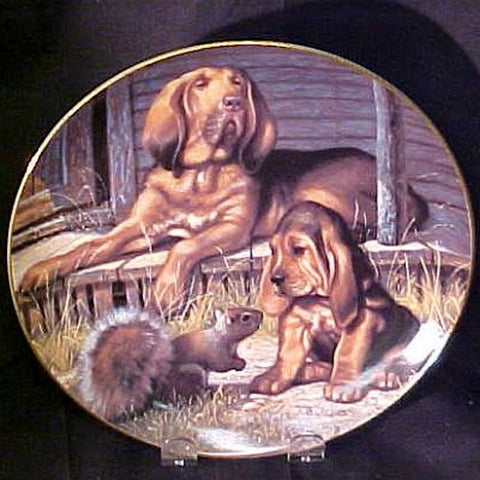 Collector Plates | Who's Tracking Who Bloodhounds