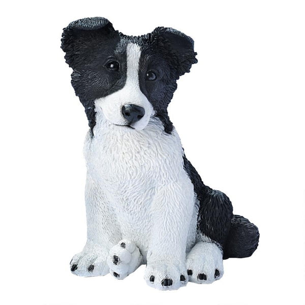 Border Collie Puppy Statue Castagna Dog Figurine