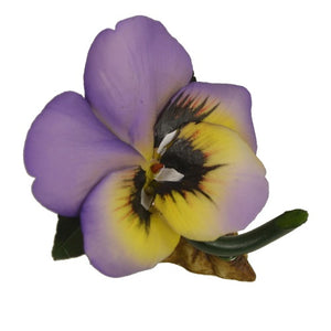 Capodimonte Porcelain Pansy Flower Rose by Napolean