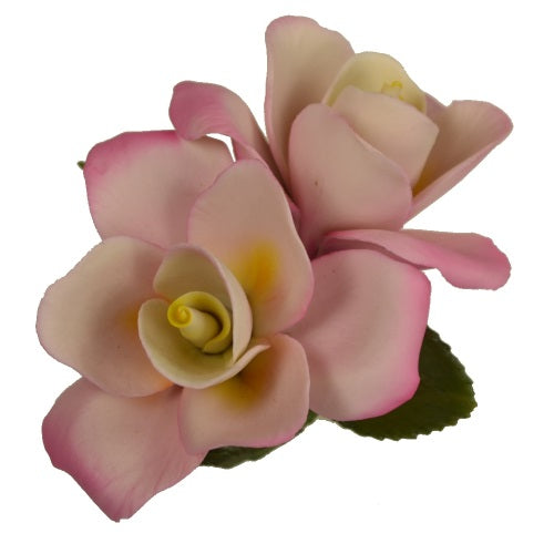 Capodimonte Porcelain Double White and Pink Rose by Napolean