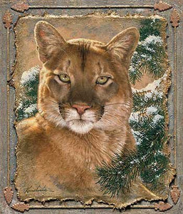 Art | Cougar Wrapped Canvas Art by Lee Kromschroeder