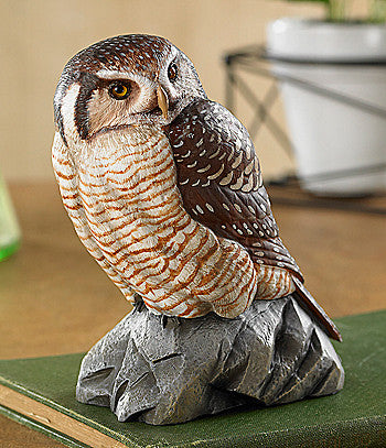 Wildlife Sculpture | Hawk Owl Sculpture by Randal Martin