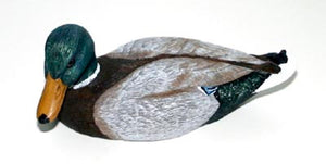 Duck Decoys | Mallard Duck Drake by Jennings Decoy Company