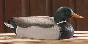 Duck Decoys | Mallard Duck Decoy Great Northern Art