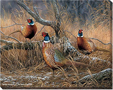 Art | Wrapped Canvas Pheasants