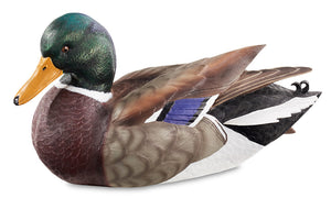 Duck Decoys | Quarter Size Mallard Decoy 1/4 Size by Sam Nottleman
