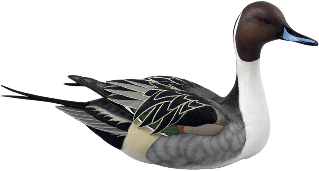 Duck Decoys | Pintail Decoy by Sam Nottleman