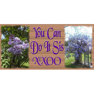 Sister Wood Signs - You Can Do It Sis - GS 1978 - Sister Plaque - Encouragement Sign