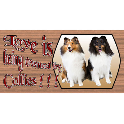 Collie Wood Signs - Collie-GS1670 Wood Signs with Sayings - Dog signs - Collie plaque