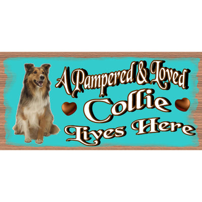 Collie Wood Signs -A Pampered & Loved Collie Lives Here - Dog Sign