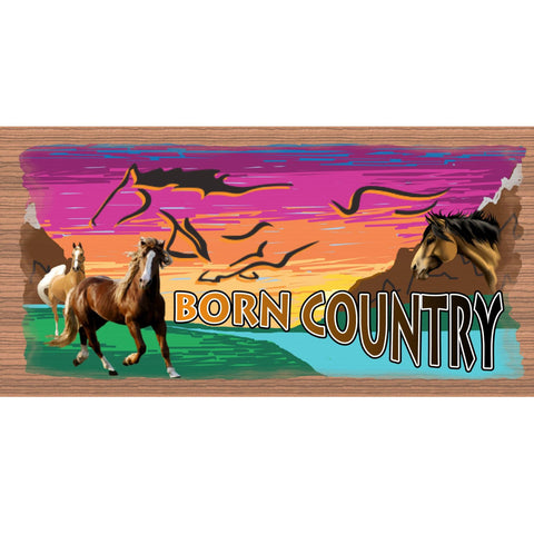 Wood Signs - Born Country GS2044 GiggleSticks