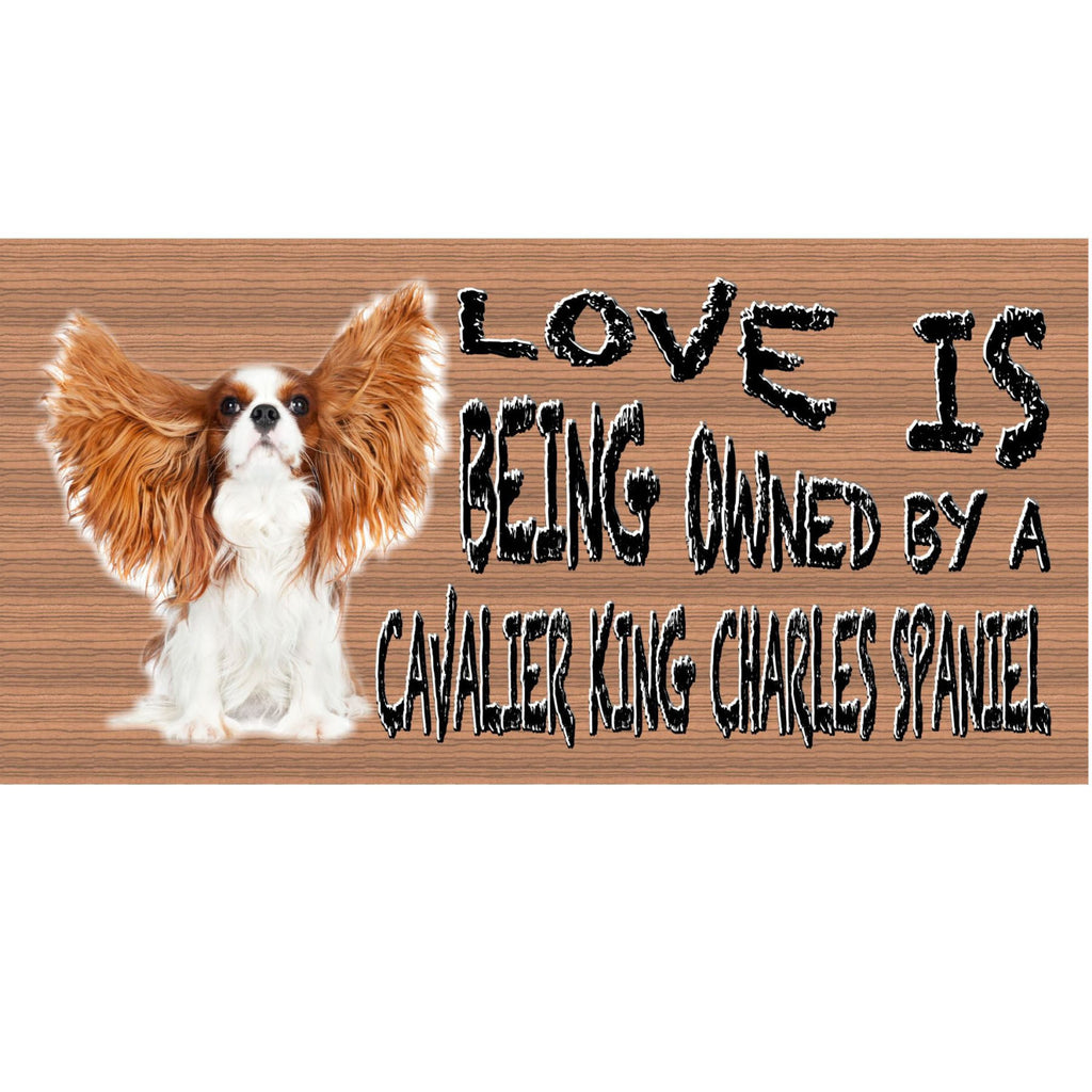 Wood Signs - Handmade Wood sign, Cavalier King Charles GS410 Gigglesticks Wood sign