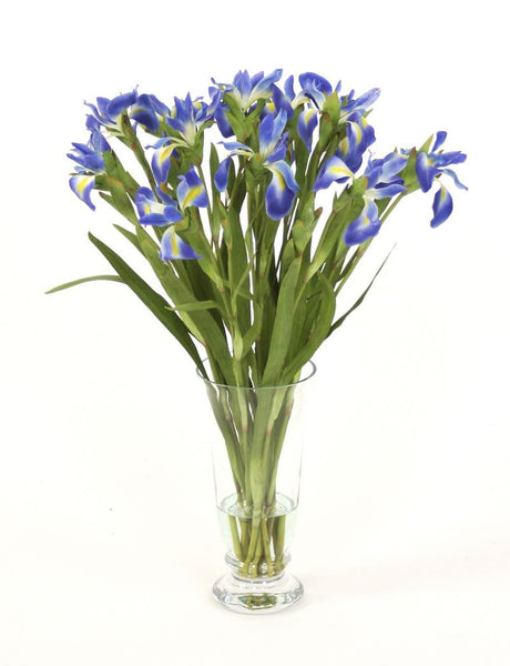 BLUE IRIS IN FOOTED VASE