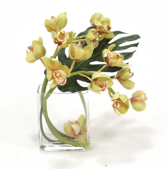 GREEN ROSE CYMBIDIUM ORCHID