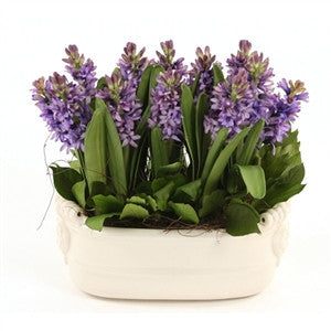 Silk Blue-Purple Hyacinth Garden - GDH | The decorators department Store