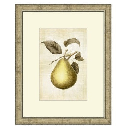 LOVELY FRUIT II - GDH | The decorators department Store